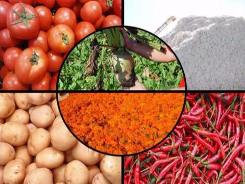 农产品收购企业称重管理系统方案