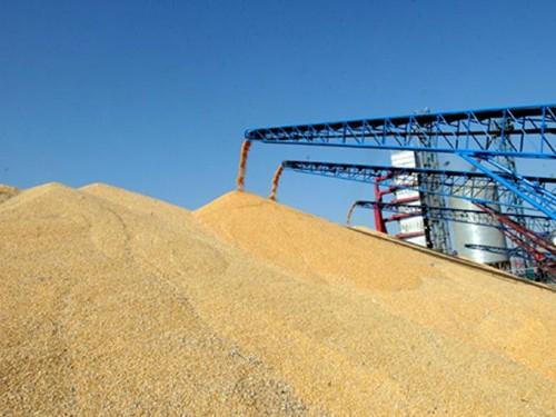 粮食收购称重管理系统方案